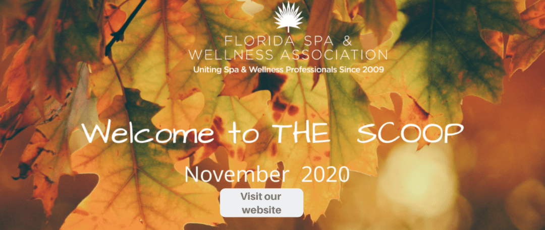 November 2020 The Scoop